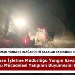Tosya'daki  Orman Yangını Olağanüstü Çabalar Sayesinde Söndürüldü